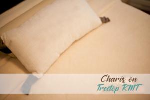 charis-pillow
